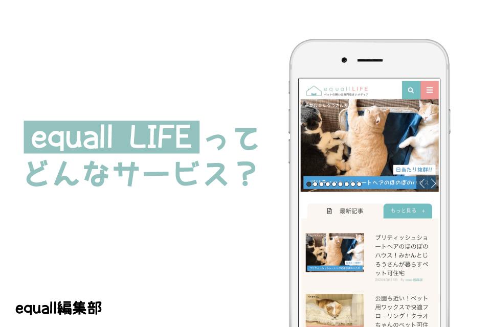 article_thumbnail