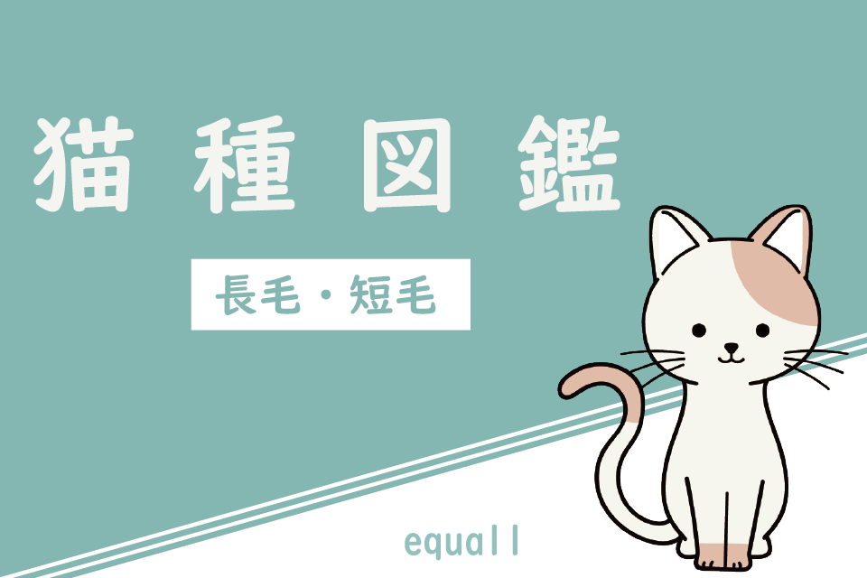 猫種図鑑|長毛・短毛の飼い方・飼育費用・特徴・性格・暮らしデータ
