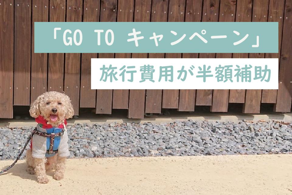 ペットとのおでかけにも!?旅行費用を半額補助する「Go To キャンペーン」愛犬と旅行にゴートゥートラベルキャンペーンでペット宿へ