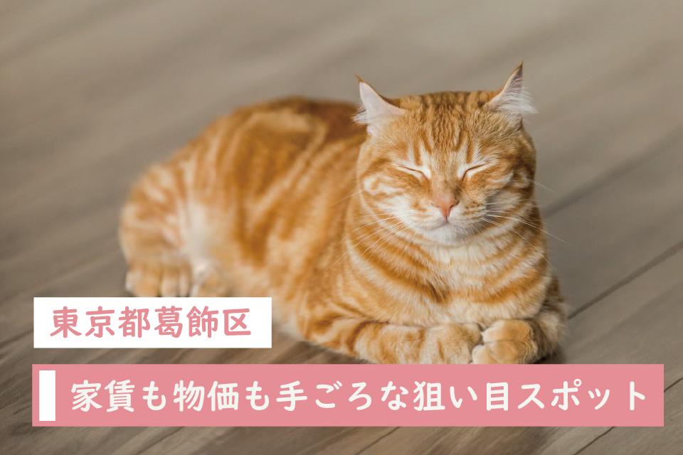 家賃も物価も手ごろな東京都葛飾区でペットと暮らそう