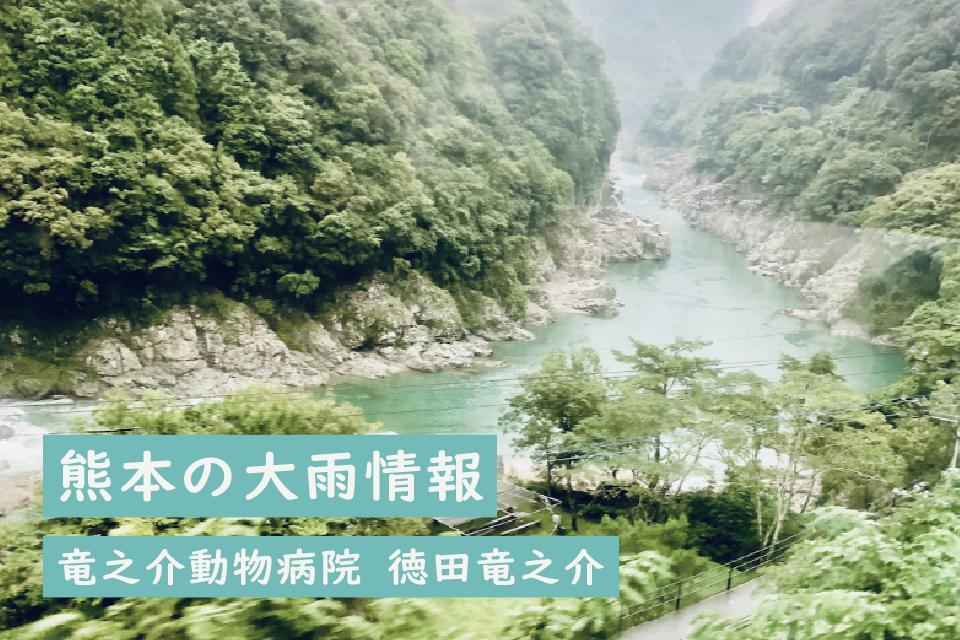 熊本の大雨情報|徳田 竜之介