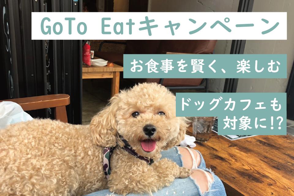ペットとお得な食事に「GoToEatキャンペーン」愛犬とドッグカフェにゴートゥーイートキャンペーンを活用!