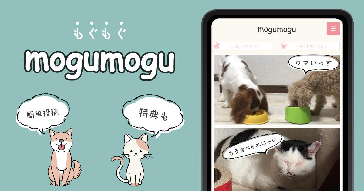 ペットの「もぐもぐ」写真を投稿して豪華特典をGETしよう!mogumoguキャンペーン